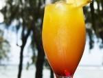 120130134327-120214124815-p-O-koktejl-iz-shampanskogo-s-apelsinovo-ananasovim-sokom